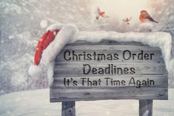 lifethreads albums Christmas 2016 order deadlines